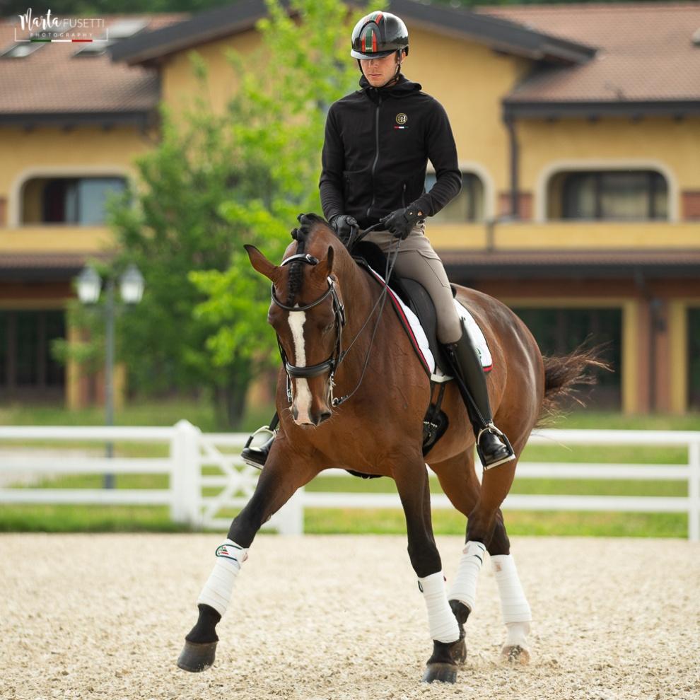 Stefano Chesi: passione, talento e professionalità al servizio dei cavalli